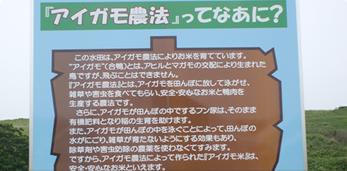 アイガモ農法について